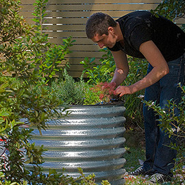 Kingston Water Tanks - Garden Bed